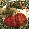 sous vide pork tenderloin with mushroom sauce recipe main photo