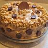 peanut butter cup cake recipe main photo