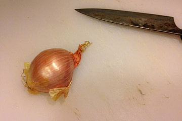 how to mince a shallot recipe main photo