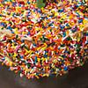 chocolate sprinkles birthday cake recipe main photo
